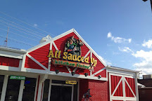 All Sauced Up # 2, Pigeon Forge, United States