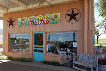 Sunflower Station, Adrian, United States