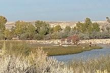 Seedskadee National Wildlife Refuge, Green River, United States