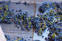 Adelaida Vineyards & Winery, Paso Robles, United States