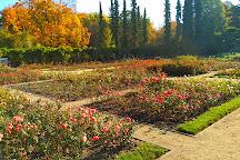 Rose Garden - Rozanka, Szczecin, Poland
