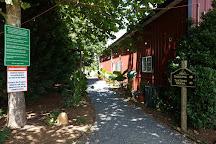 Wilderness Run Vineyards, Spotsylvania, United States