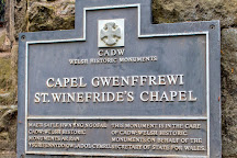 St. Winefride's Well, Holywell, United Kingdom