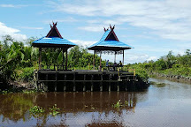 Tanjung Puting National Park, Central Kalimantan, Indonesia