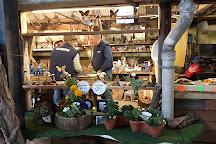 Gaston Farm, Slindon, United Kingdom