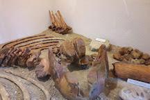Musee archeologique de Soyons, Soyons, France