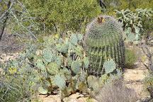Rincon Mountain Visitor Center, Tucson, United States