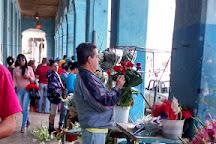 Mercado Agropecuario Egido, Havana, Cuba