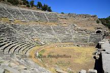 Nysa Ruins, Aydin, Turkey