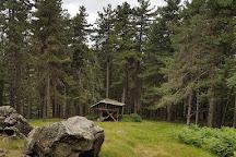 Giardino Pietra Corva : Visit giardino botanico alpino di pietra corva on your trip to romagnese