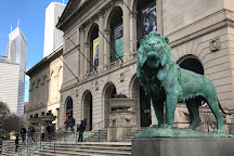 The Art Institute of Chicago, Chicago, United States