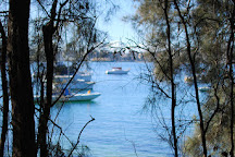 Forty Baskets Beach, Balgowlah, Australia