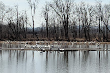 Rieck's Lake Park, Alma, United States