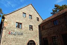 Antikenmuseum mit Abguss-Sammlung, Heidelberg, Germany