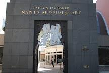 Artis-Naples, Naples, United States