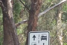 Wolf Blass, Nuriootpa, Australia