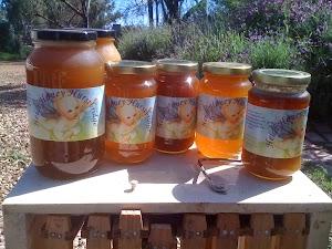 Bee Rescue - Heidi Honey Hurstbridge