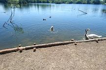 Leybourne Lakes Country Park, Larkfield, United Kingdom