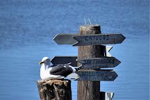 Chablis Cruises, Morro Bay, United States