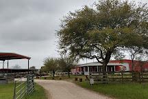 Jersey Barnyard, La Grange, United States