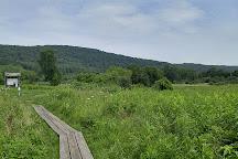 Macricostas Preserve, New Preston, United States