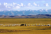 Hemu Grasslands, Burqin County, China