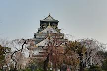 Osaka Castle Peach Grove, Osaka, Japan