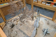 Maturango Museum, Ridgecrest, United States