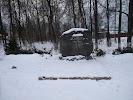 Памятник М.В. Скопину-Шуйскому на фото Кохмы