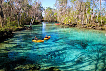 Manatee Fun Tours, Crystal River, United States