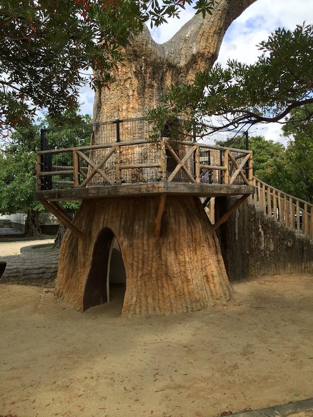 Adanjido Park