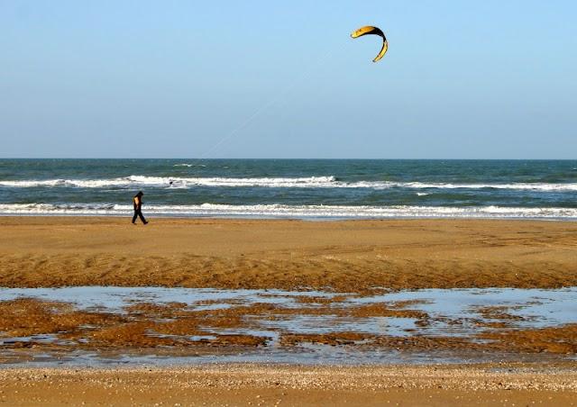 Kite Paradise
