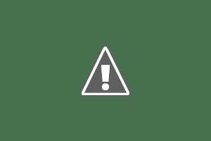 Vignobles Mayard - Producteur et vente de vins à Châteauneuf Du Pape - Oenotourisme - Visite - Dégustation