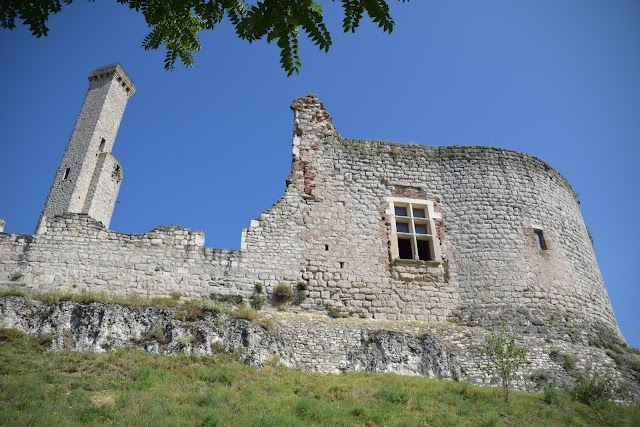Château de Castelnau-de-Lévis