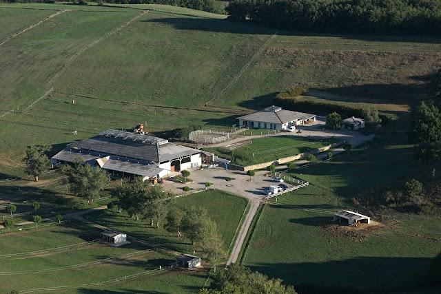 Rec Farm