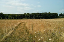 Clayton Wood Natural Burial Ground, Clayton, United Kingdom