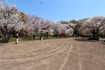 Musashino Park, Koganei, Japan
