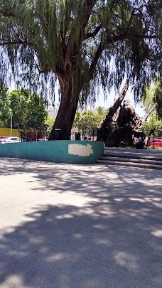 Popotla mexico-city MX