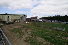 Ponderosa Rural Therapeutic Centre, Heckmondwike, United Kingdom