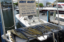 Knot Nancy Fishing Charters, Miami, United States