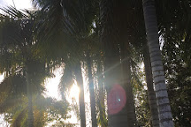 Grimal Grove, Big Pine Key, United States