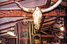 Babcock Ranch Eco Tours, Punta Gorda, United States