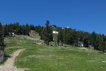 Mt. Ashland Ski Area, Ashland, United States