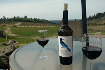 Lava Cap Winery, Placerville, United States