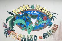Frogs Heaven, Horquetas, Costa Rica