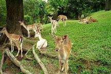 Kuala Lumpur Deer Park, Kuala Lumpur, Malaysia