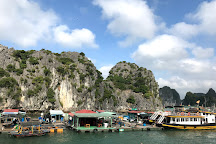 Dao's Travel Agency - Day Tours, Hanoi, Vietnam