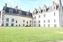 Chateau d'Amboise, Amboise, France