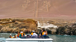 Paracas Beach Travel 6