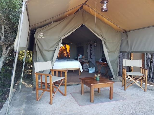 Woodbury Tented Camp, Amakhala Game Reserve